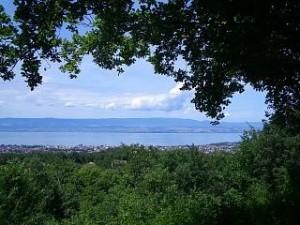 vue sur le lac - bois de ville